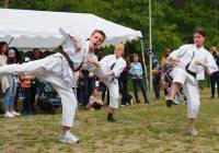 Pokaz karate - fot. KOSP